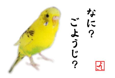 unyo-youzi.jpg